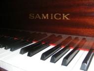 Samick SG140, £3,750