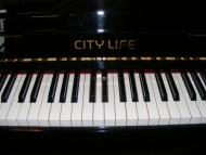 City Life from Kawai £2,800