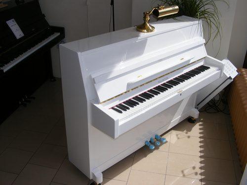 Waldstein 108