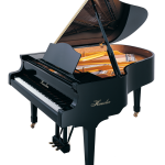 h-175-black-polish Haessler Piano