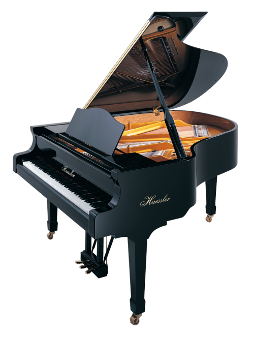h-175-black-polish Haessler Piano