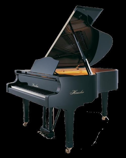 h-186-black-polish Haessler grand piano