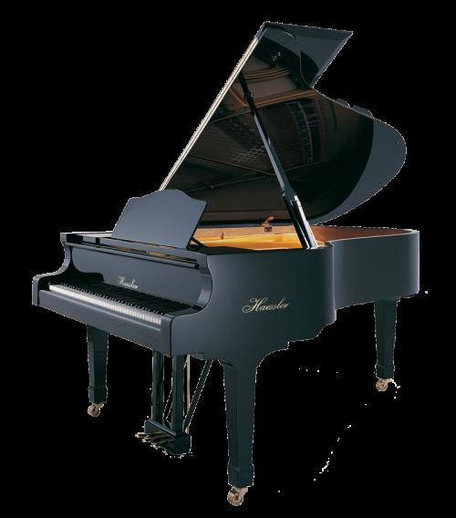 h-210-black-polish Haessler grand piano
