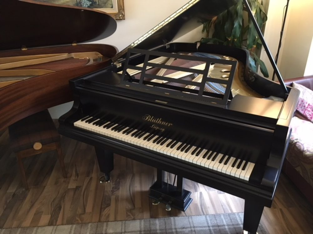Blüthner Grand Piano