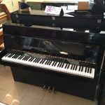 Rippen Black Upright Piano